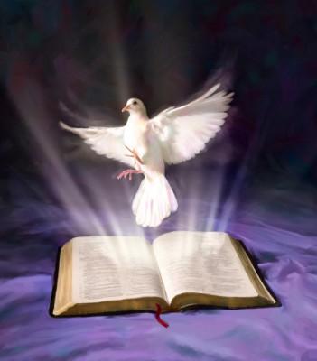 autoridad divina